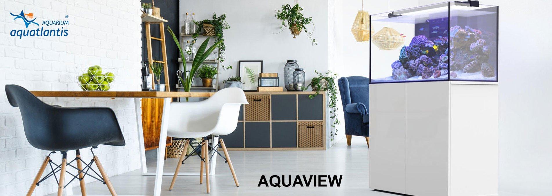 Aquatlantis Aquarium Online Shop, Bild 1