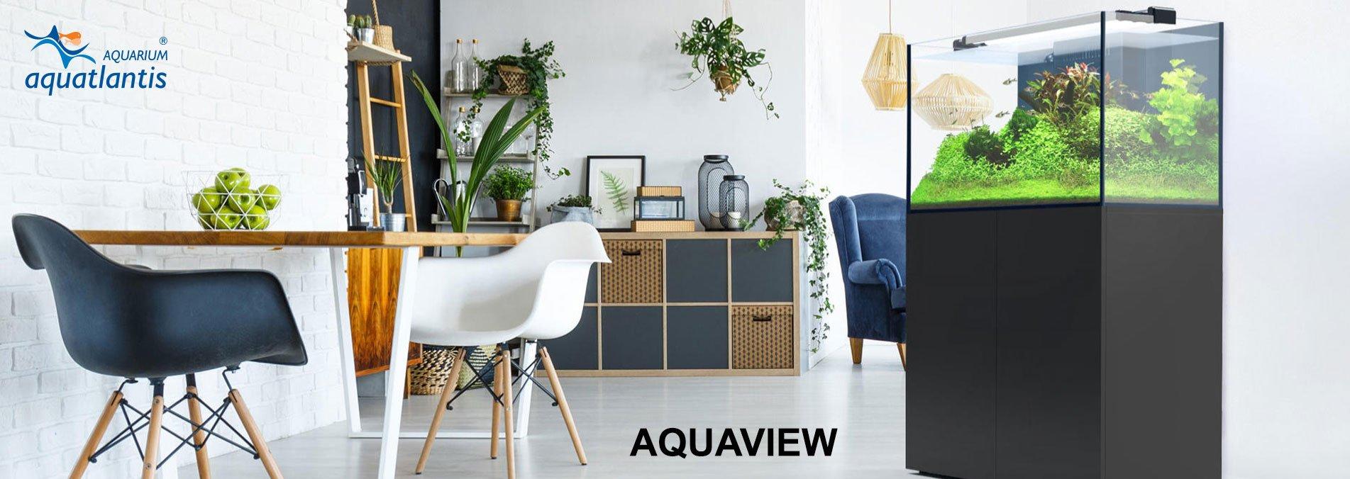 Aquatlantis Aquarium Online Shop, Bild 4