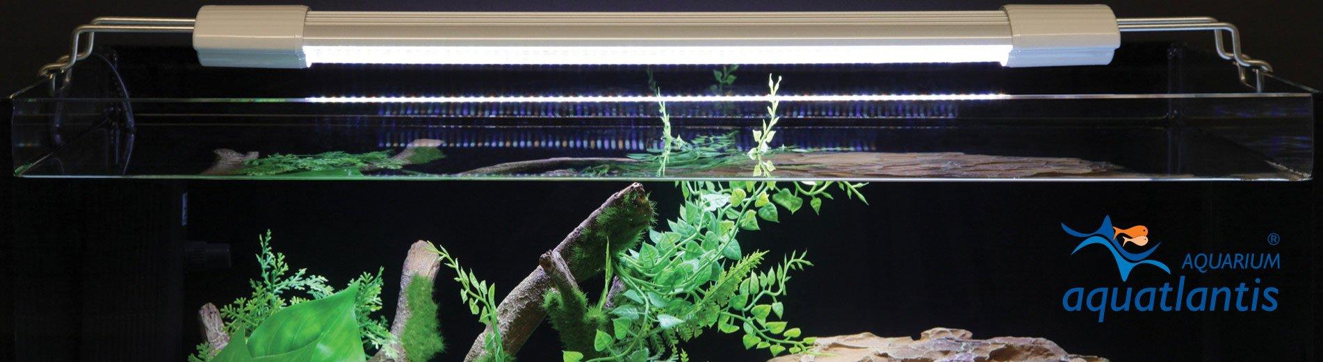 Aquarium LED Beleuchtung
