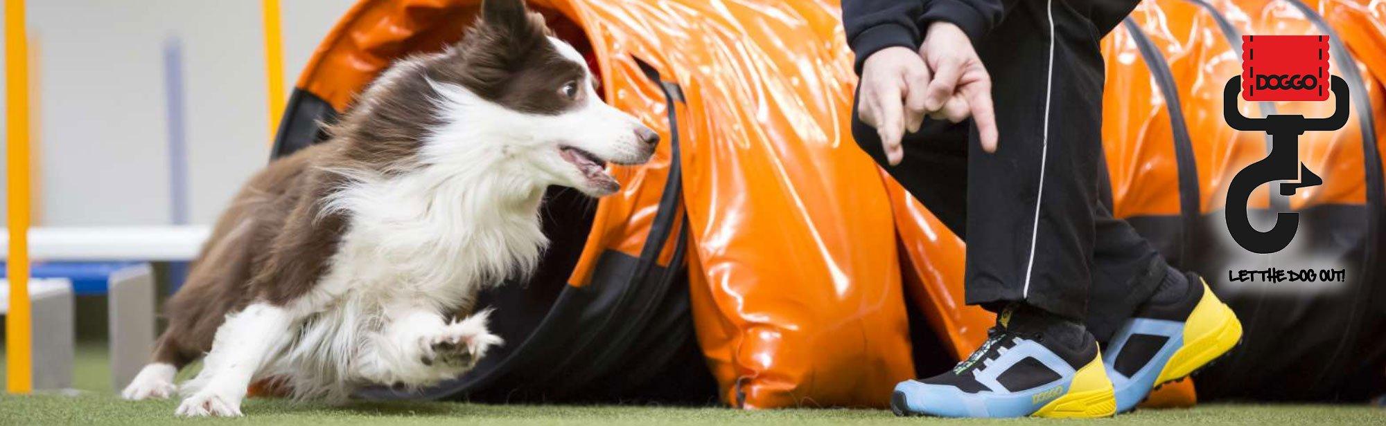 Doggo Onlineshop Gummistiefel, Bild 3