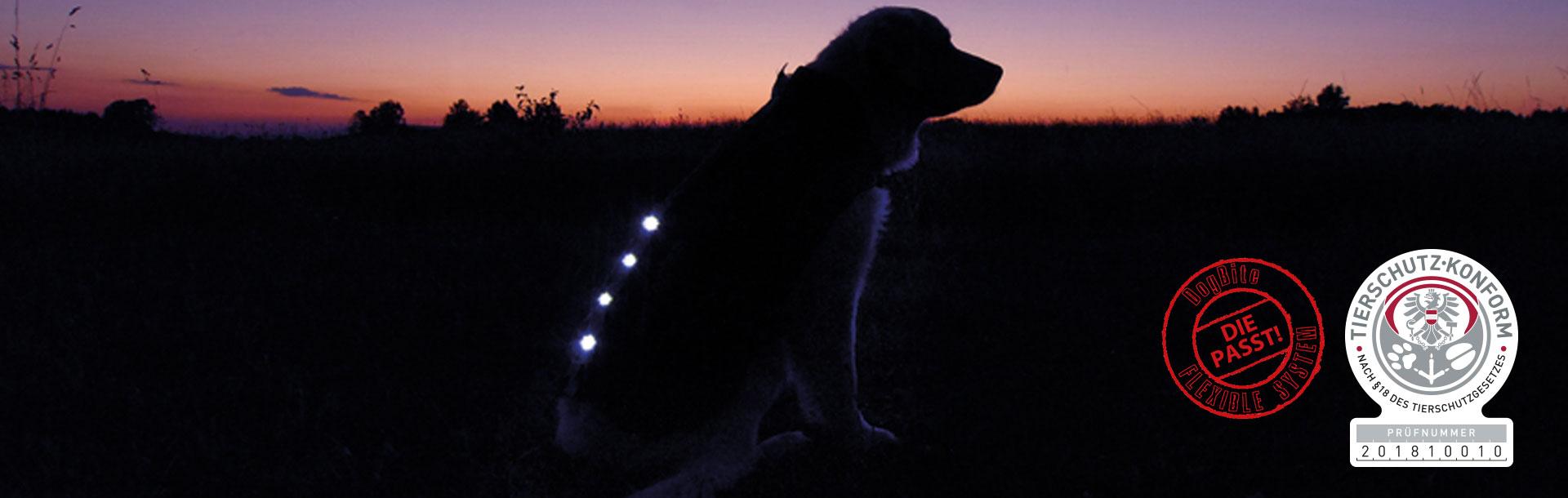 DogBite Hundejacken, Bild 3