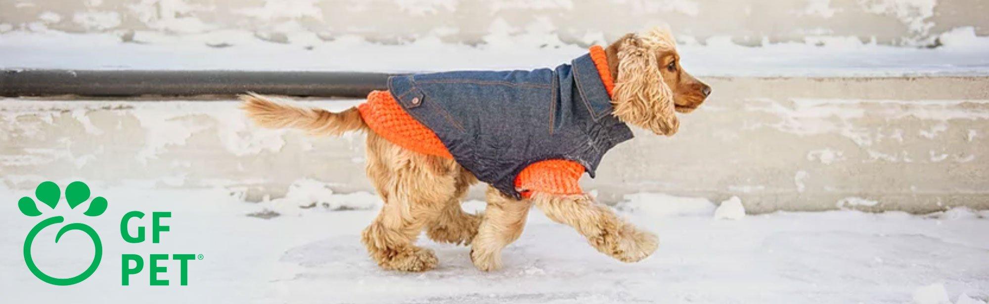 GF Pet Hundebekleidung, Bild 6