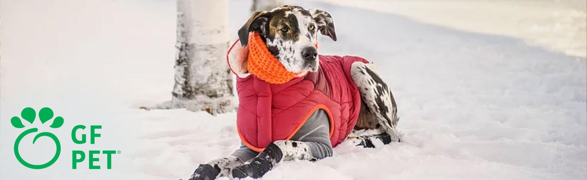 GF Pet Hundebekleidung, Bild 8