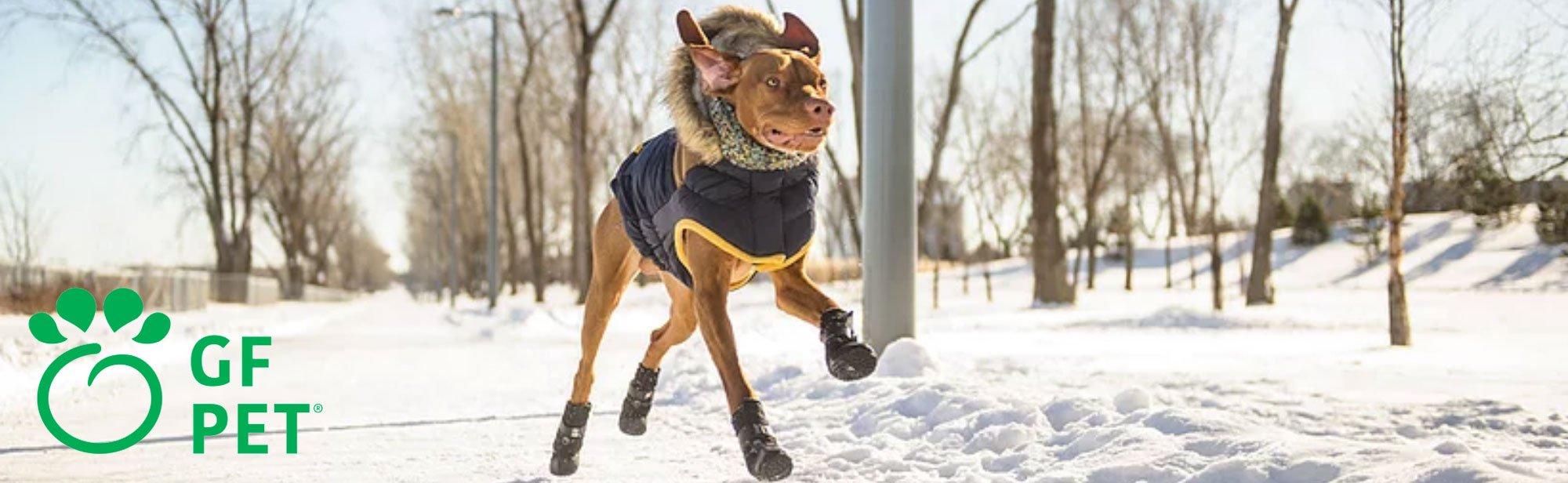 GF Pet Hundebekleidung, Bild 5