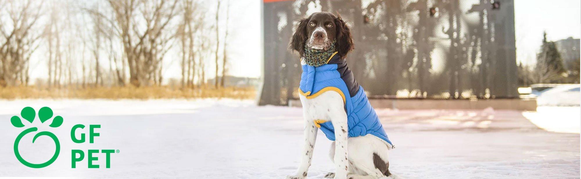 GF Pet Hundebekleidung, Bild 2