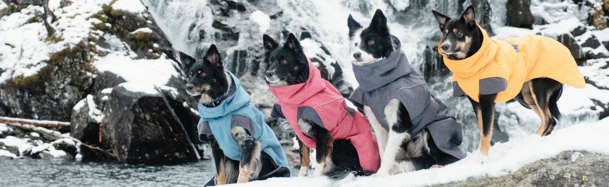Hundemantel und Hundebekleidung günstig kaufen