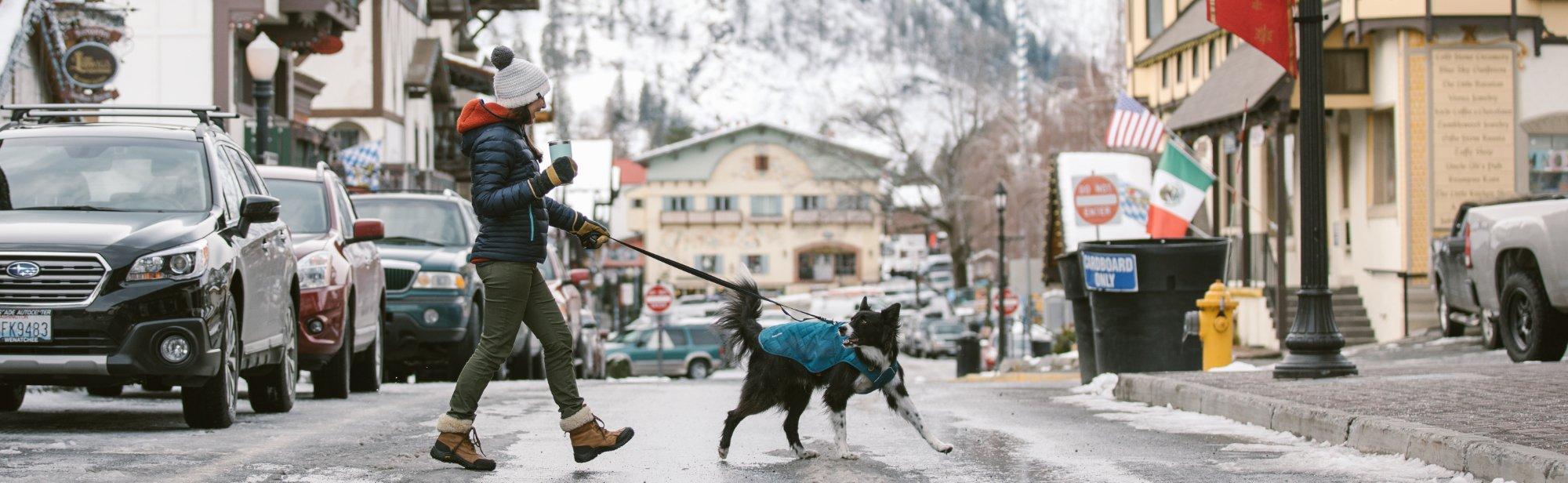Hundemäntel günstig im Shop online bestellen