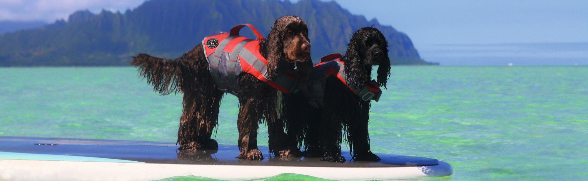Schwimmwesten Rettungswesten für Hunde