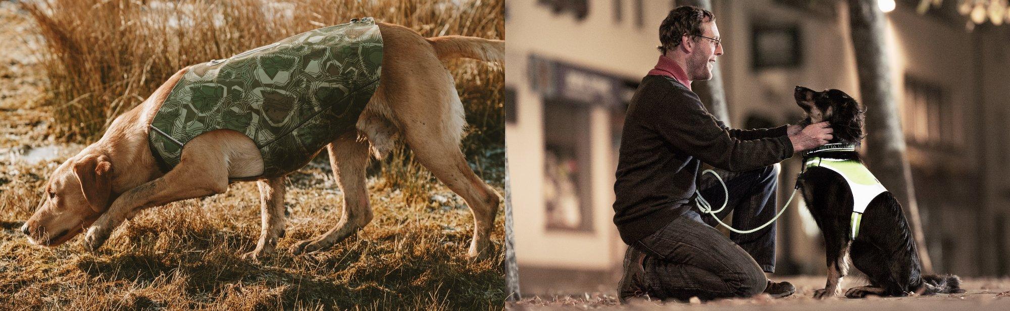 Hundewesten Sicherheitswesten für Hunde günstig online bestellen