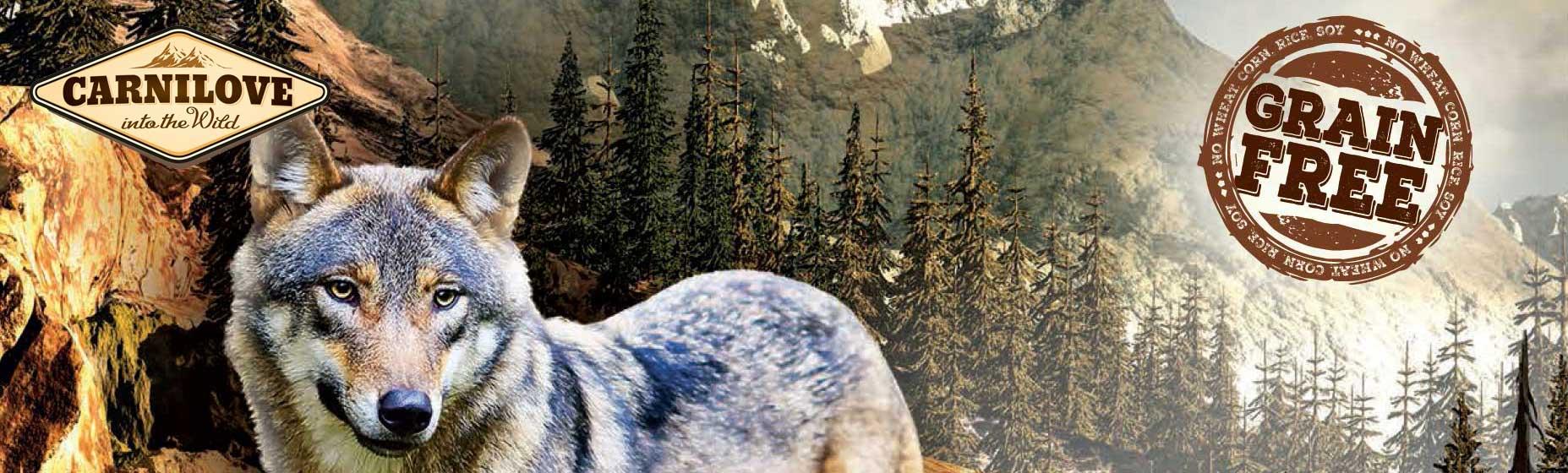 CARNILOVE Hundefutter online
