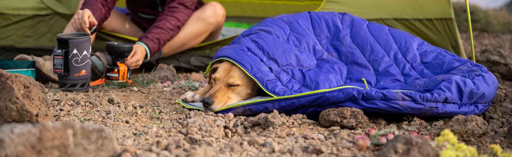 Outdoor Hundebetten und Hundekissen