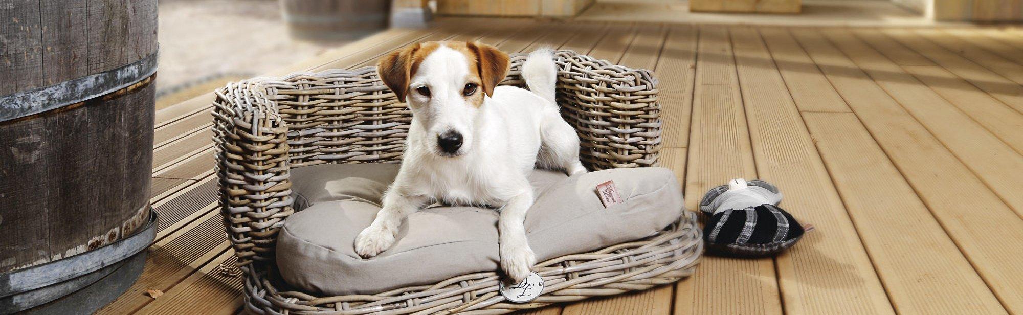 Hundebetten und Hundekörbe aus Rattan kaufen
