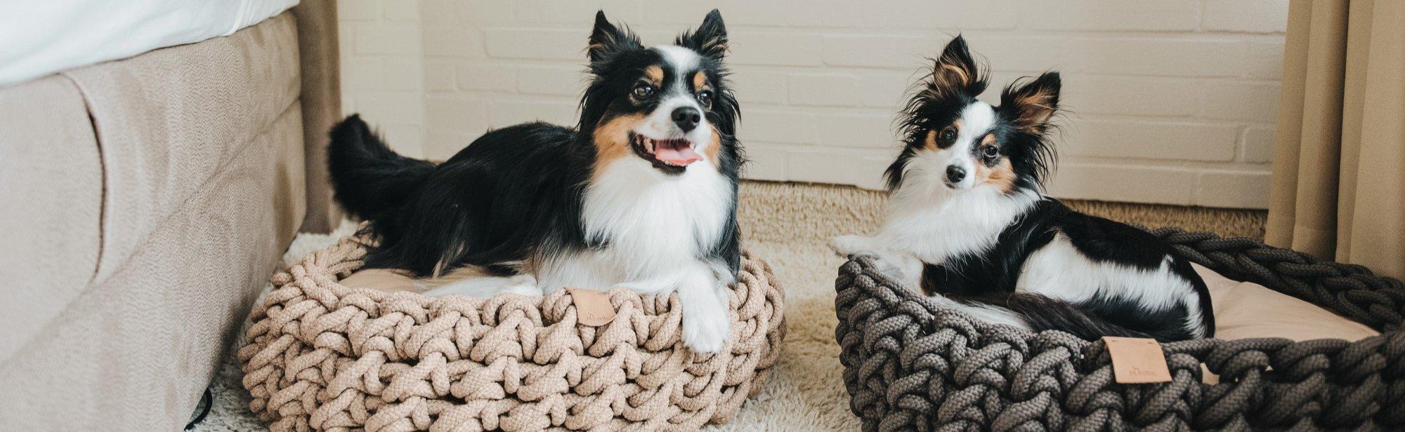 Hundekörbe online im Shop bestellen
