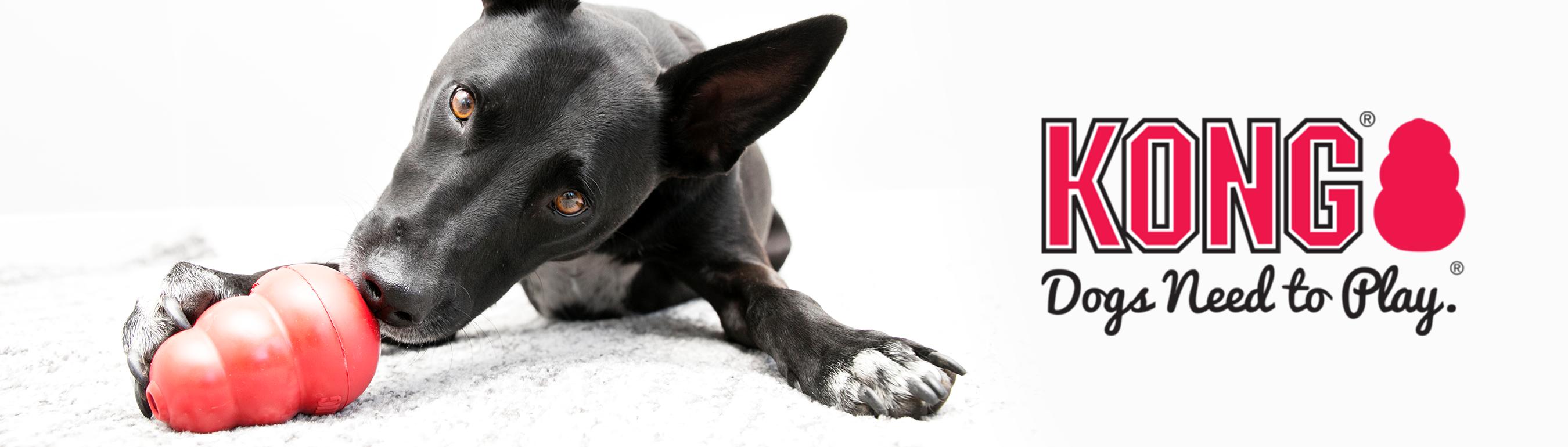KONG Hundespielzeug günstig online kaufen bei tiierisch.de