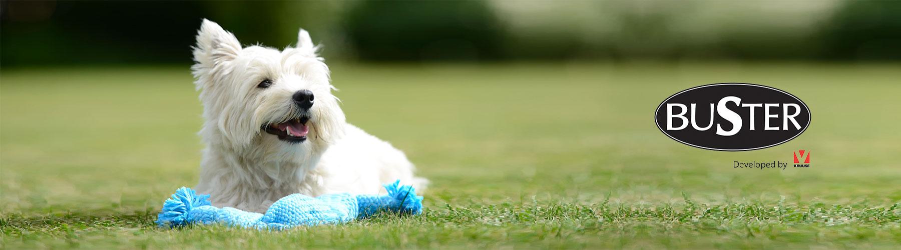 Buster Hundespielzeug