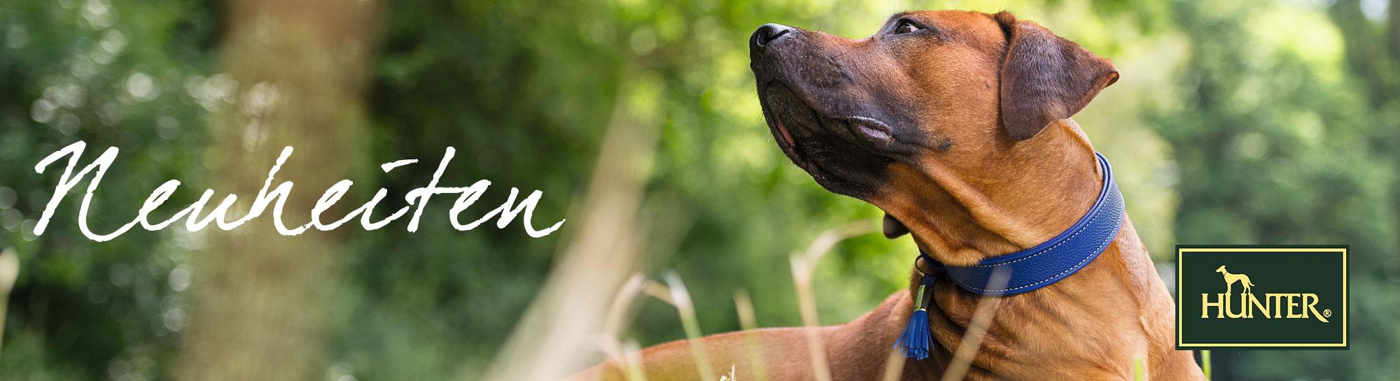 Hunter Neuheiten für Hunde