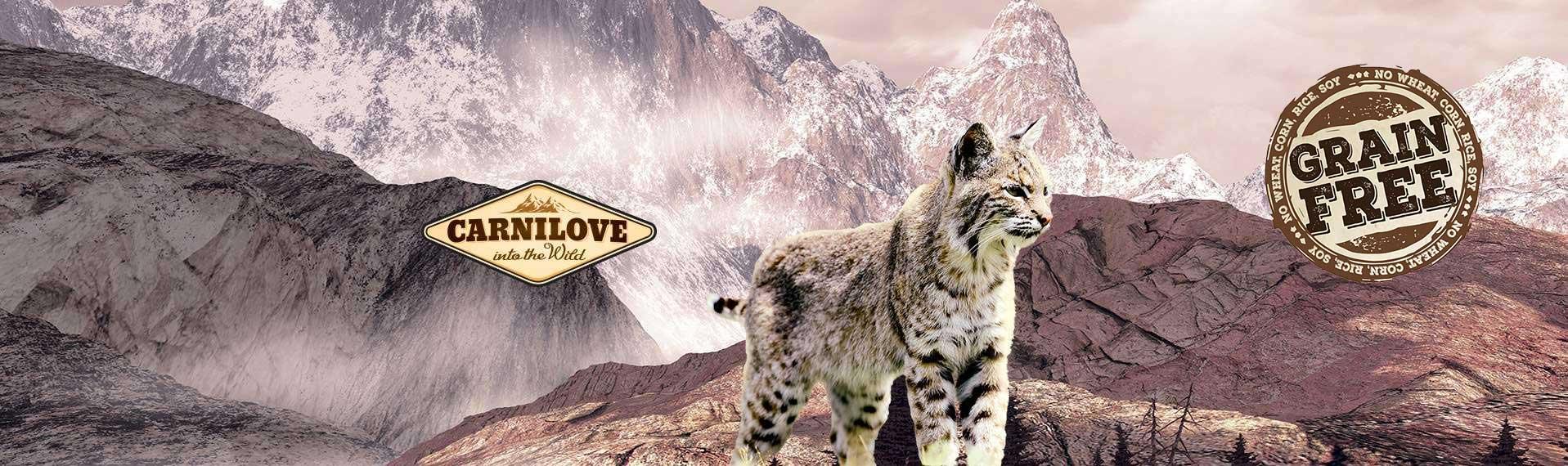 Carnilove Katzenfutter Online Shop