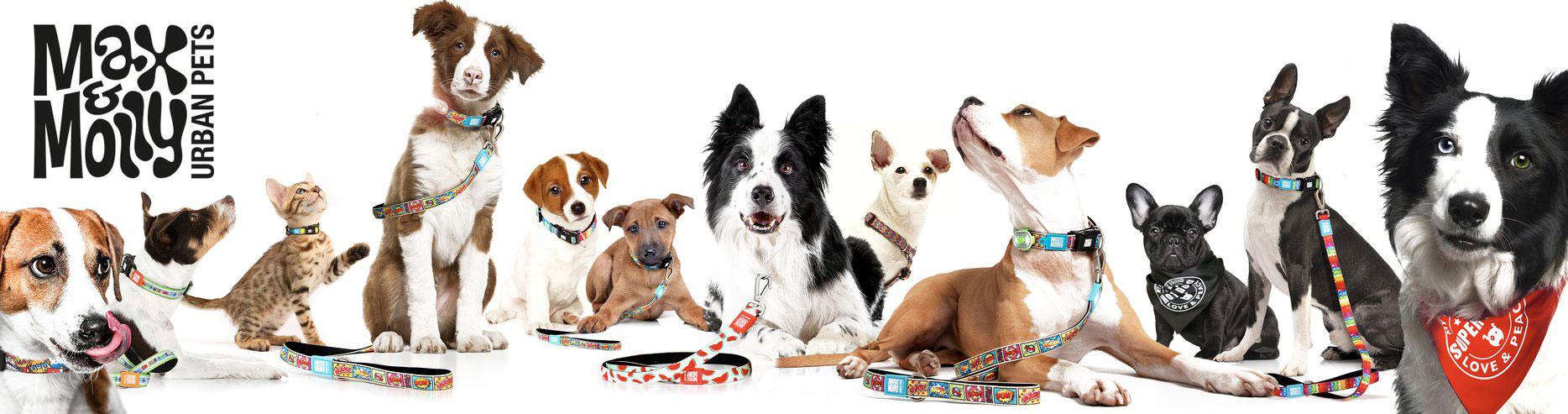 Max & Molly Urban Pets Online Shop