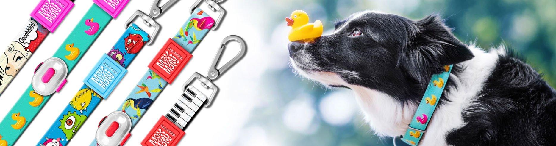 Max & Molly Urban Pets Online Shop, Bild 2