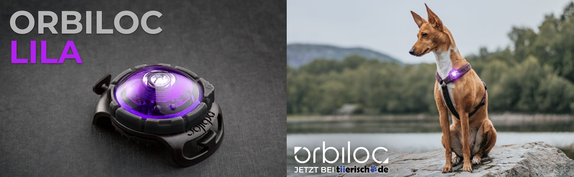 Orbiloc - The Safety Light, Bild 1