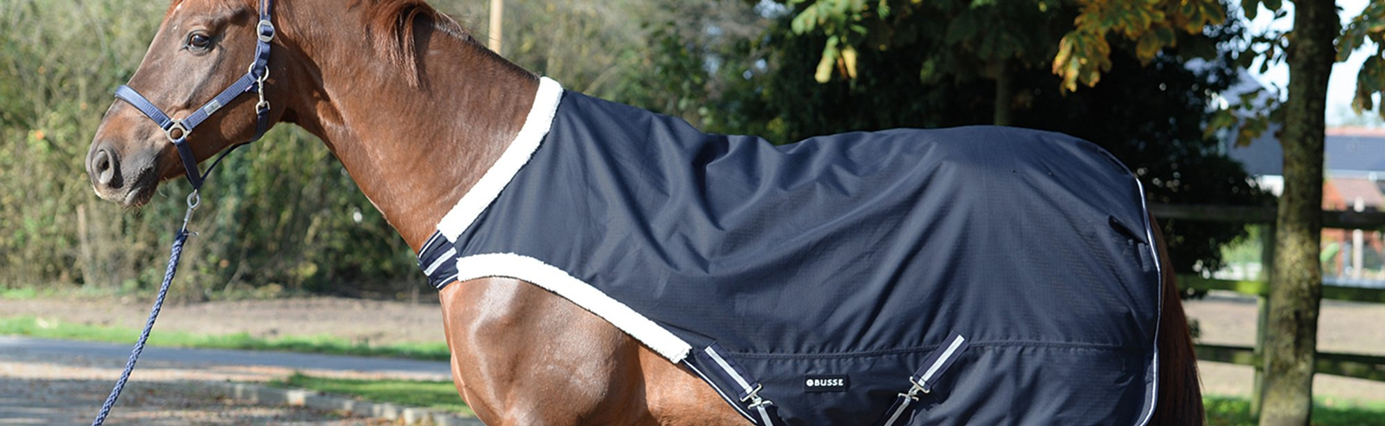 Führanlagendecken für Pferde