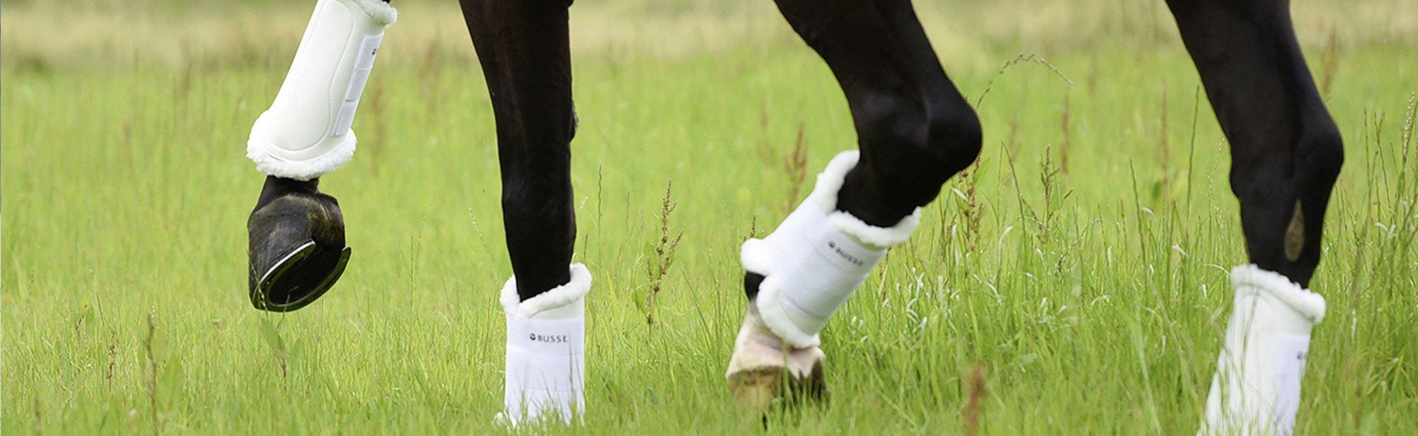 Gamaschen & Streichkappen für Pferde