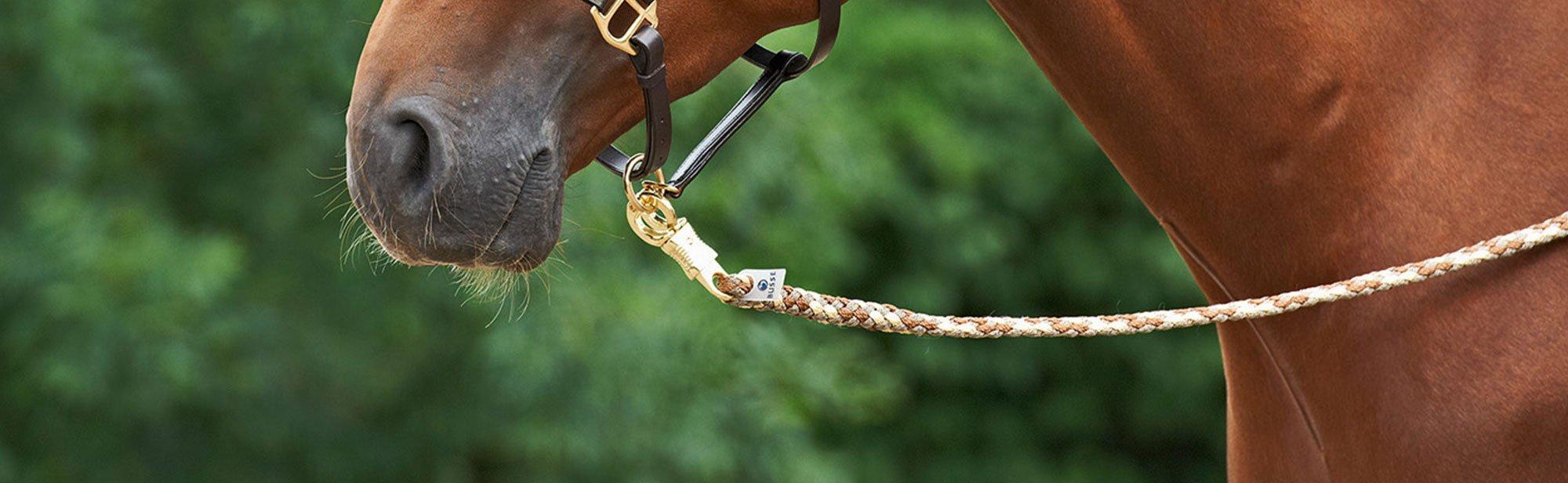 Führstricke für Pferde günstig online bestellen, Bild 2