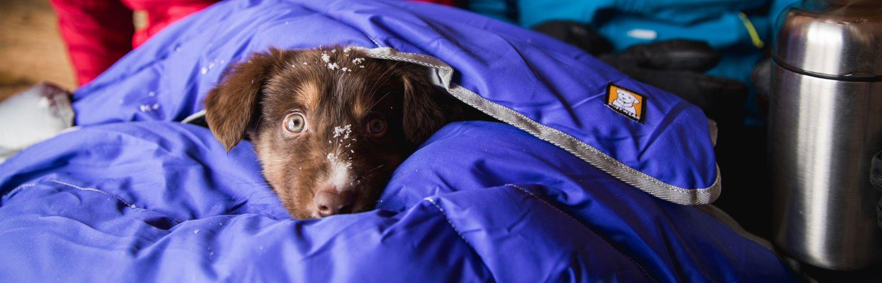 Ruffwear Hundebetten und Hundematten