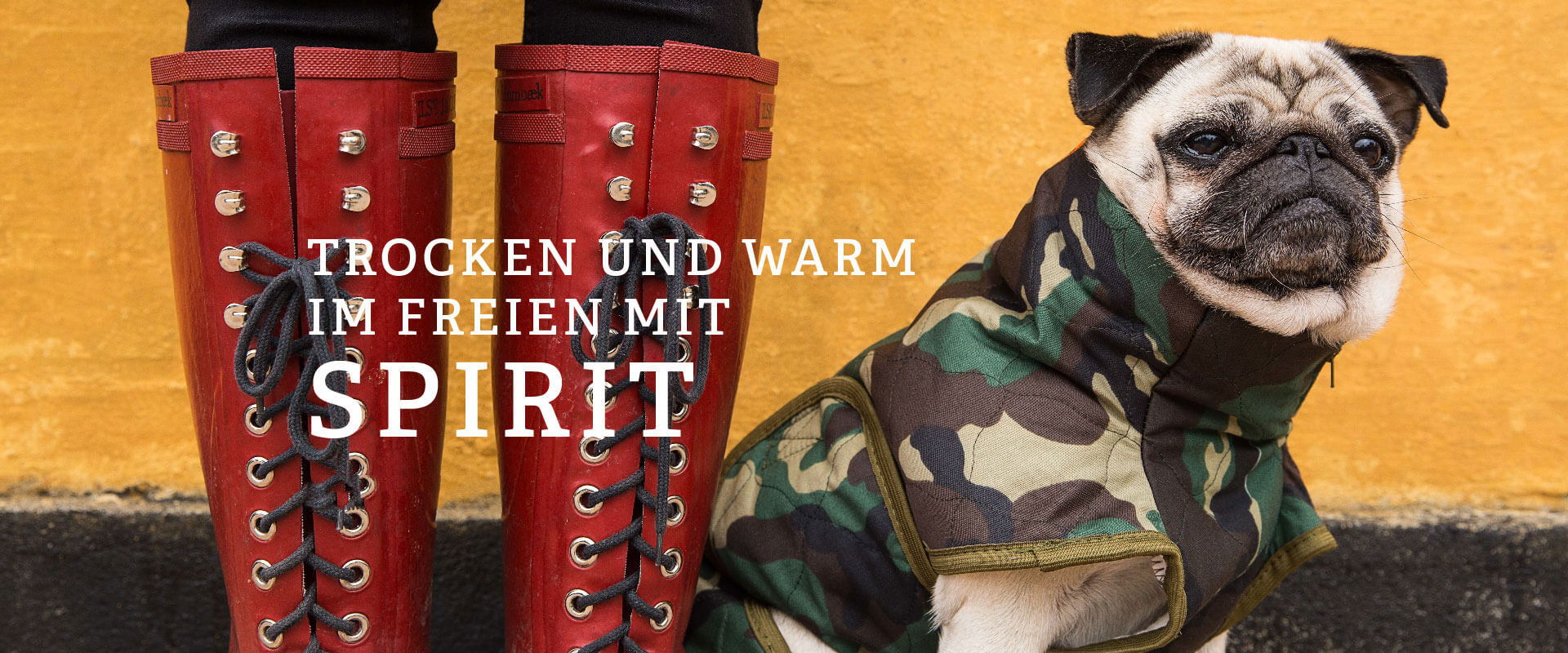 SICCARO Bademäntel, Hundemäntel und Trockenhandschuhe für Hunde, Bild 1