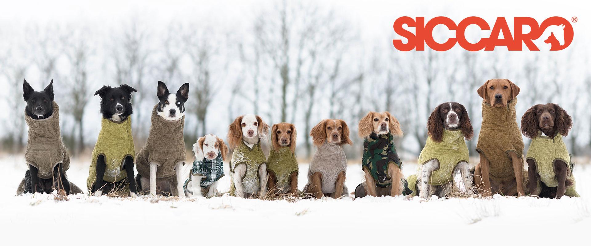 SICCARO Bademäntel, Hundemäntel und Trockenhandschuhe für Hunde, Bild 4