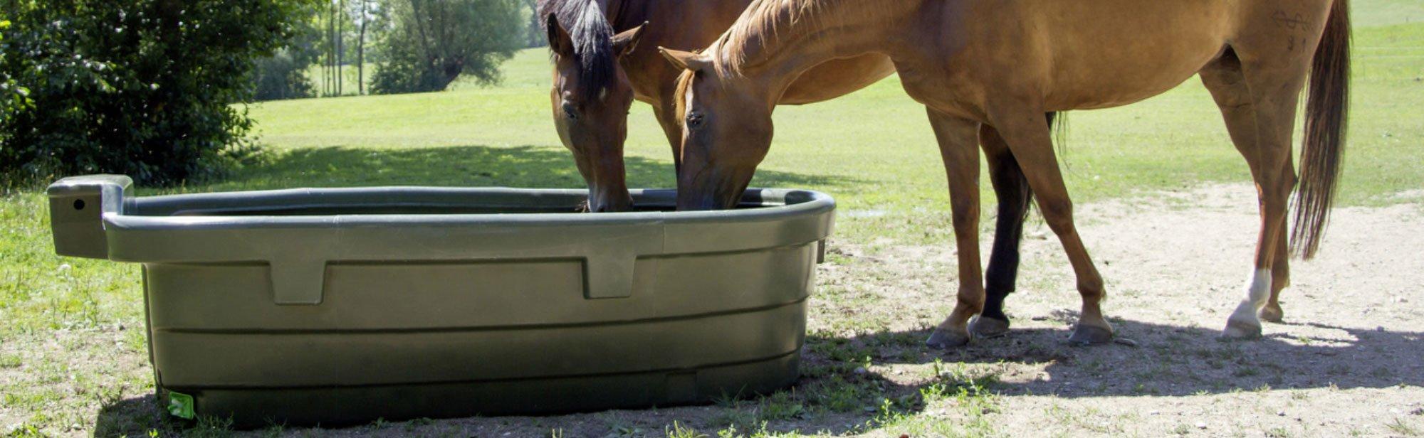 Pferde Tränken für Stall und Weide
