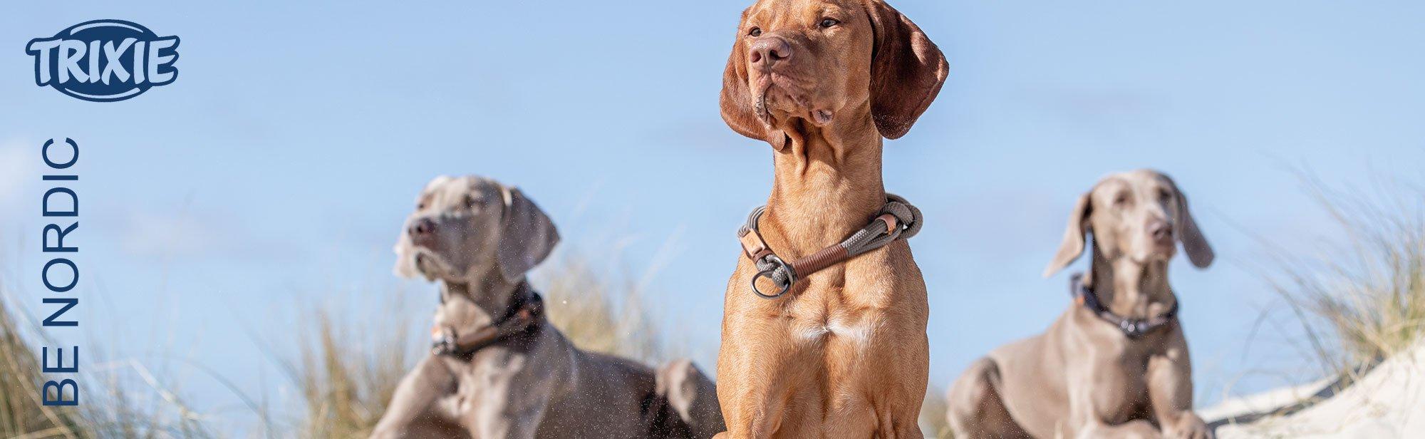 TRIXIE BE NORDIC - Hundezubehör Serie mit maritimen Flair!, Bild 6
