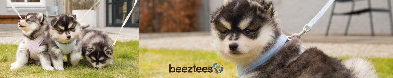 Beeztees Puppy Welpen-Serie, Bild 11