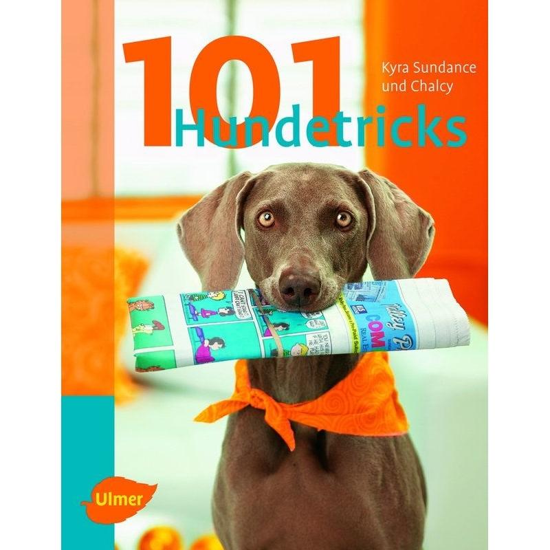 Ulmer 101 Hundetricks