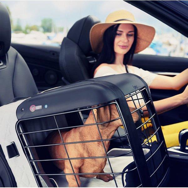 4pets Dog Caree Hundebox Transportbox für Hunde, Bild 2