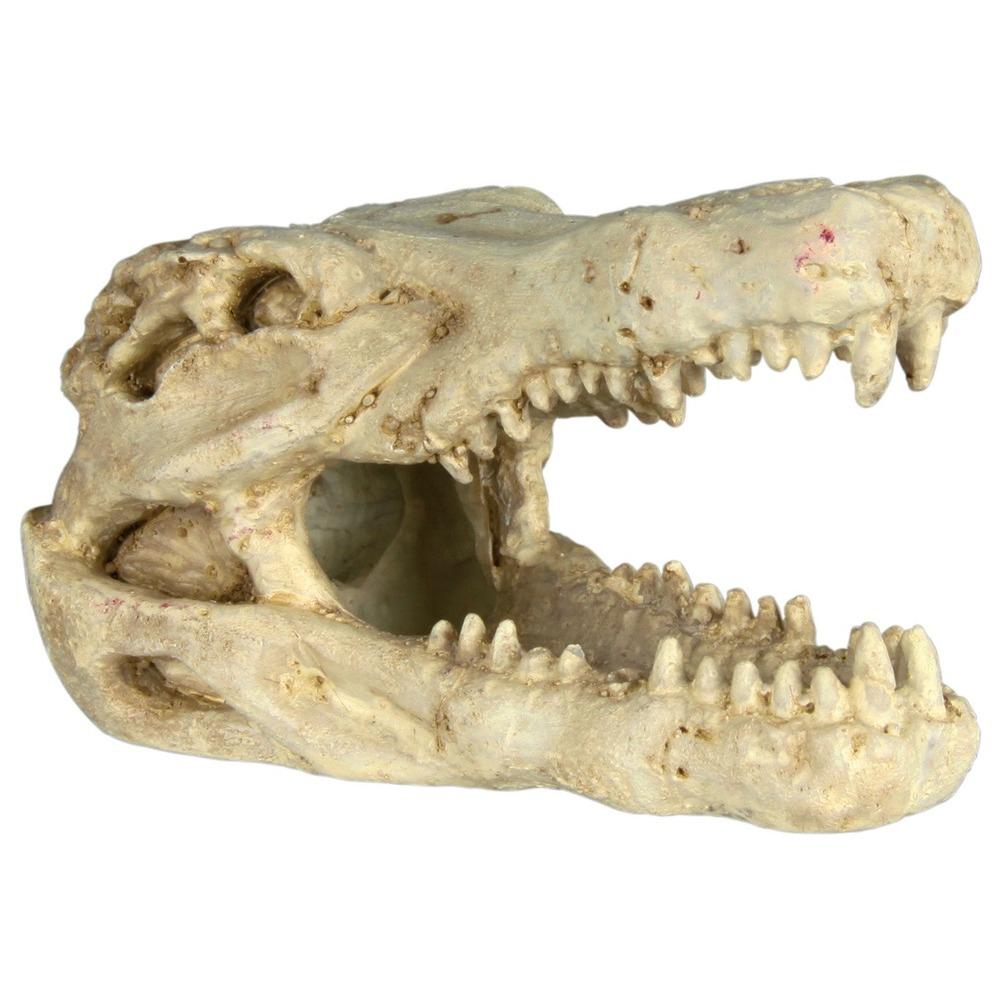Trixie 6 Schädel Aquarium Deko, 6 Stück, 8-11 cm