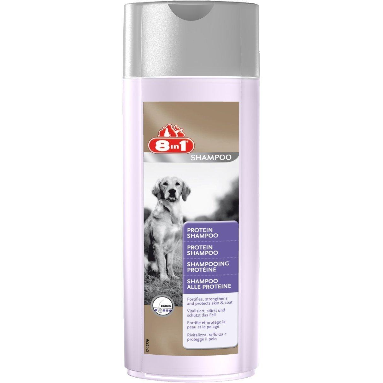 8in1 Protein Shampoo für Hunde
