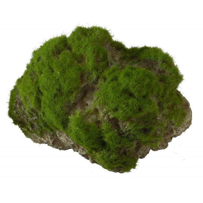 Aqua Della Moss Stone Stein mit Moos