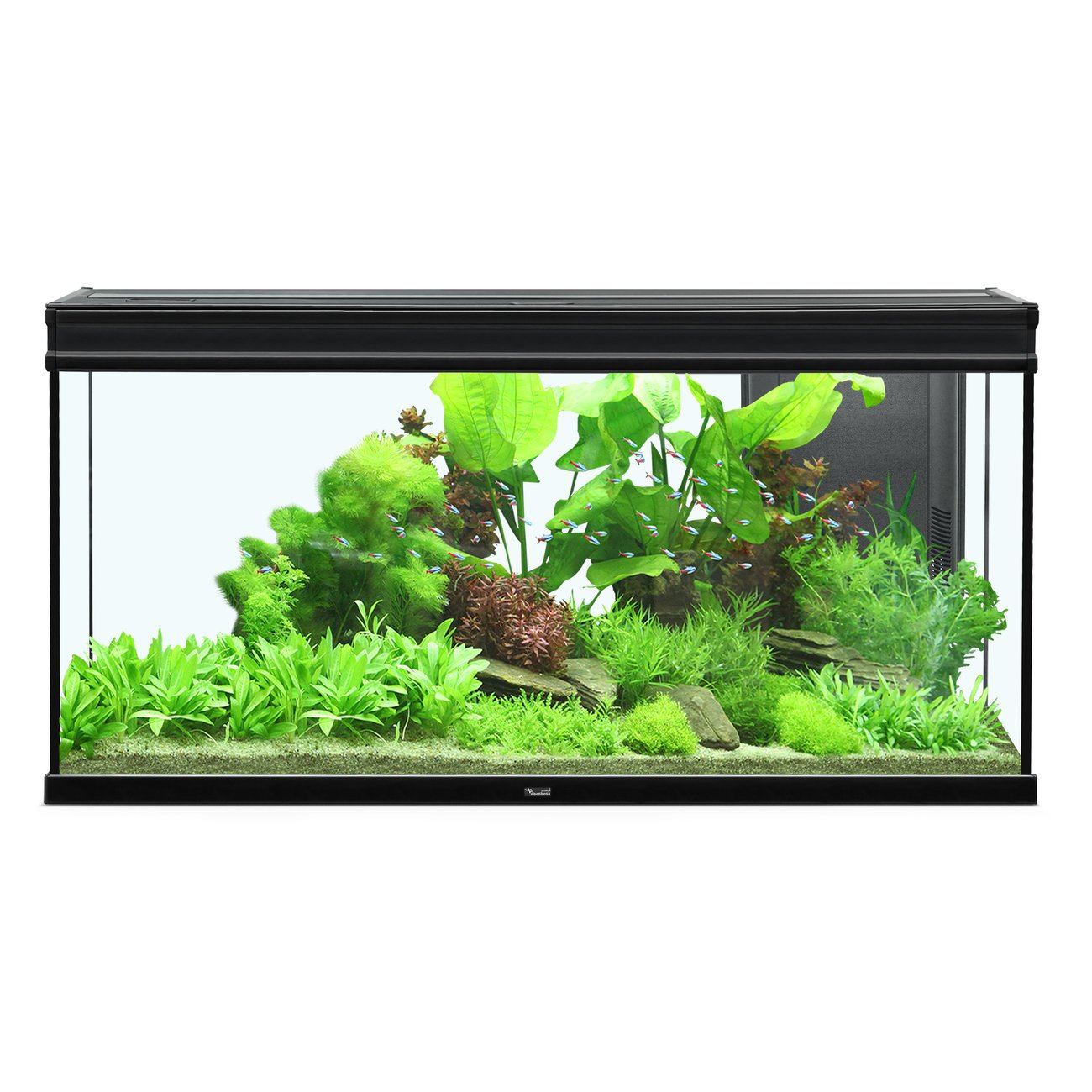 Aquatlantis Elegance Expert 120 Aquarium