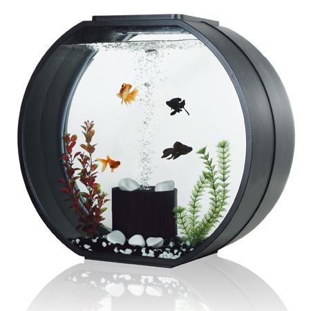 AA Aquarium Deco O Max Komplettset