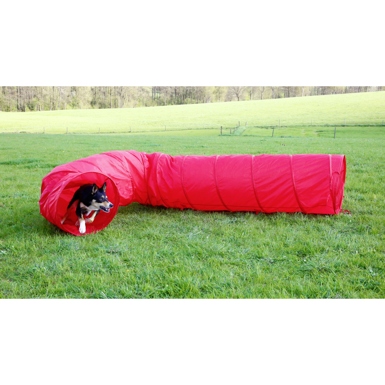Kerbl Agility Hundetunnel rot, 5m
