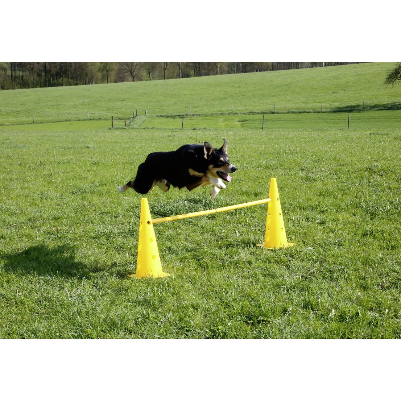 Kerbl Agility Pylonen-Hürden Set für Hunde