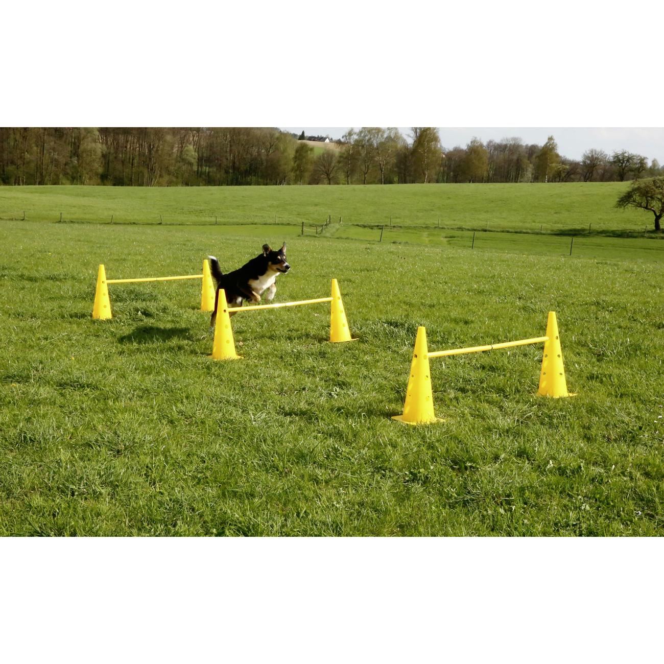 Kerbl Agility Pylonen-Hürden Set für Hunde, Bild 4
