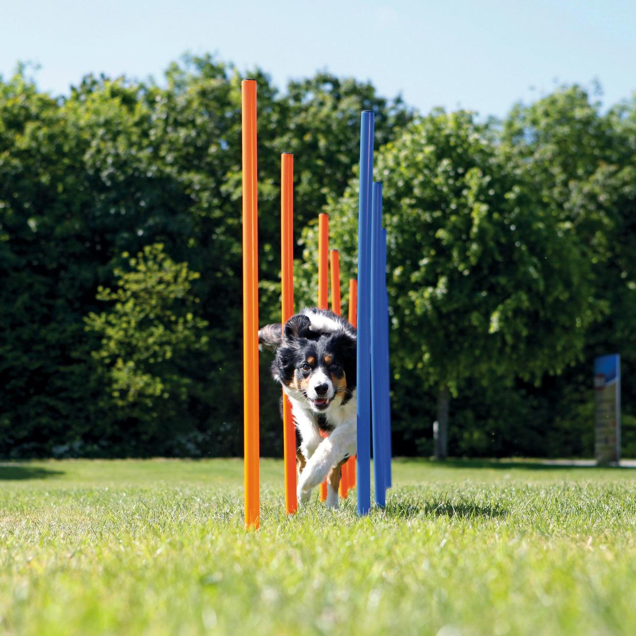 Trixie Agility Slalom Stangen für Hunde 3206, Bild 2