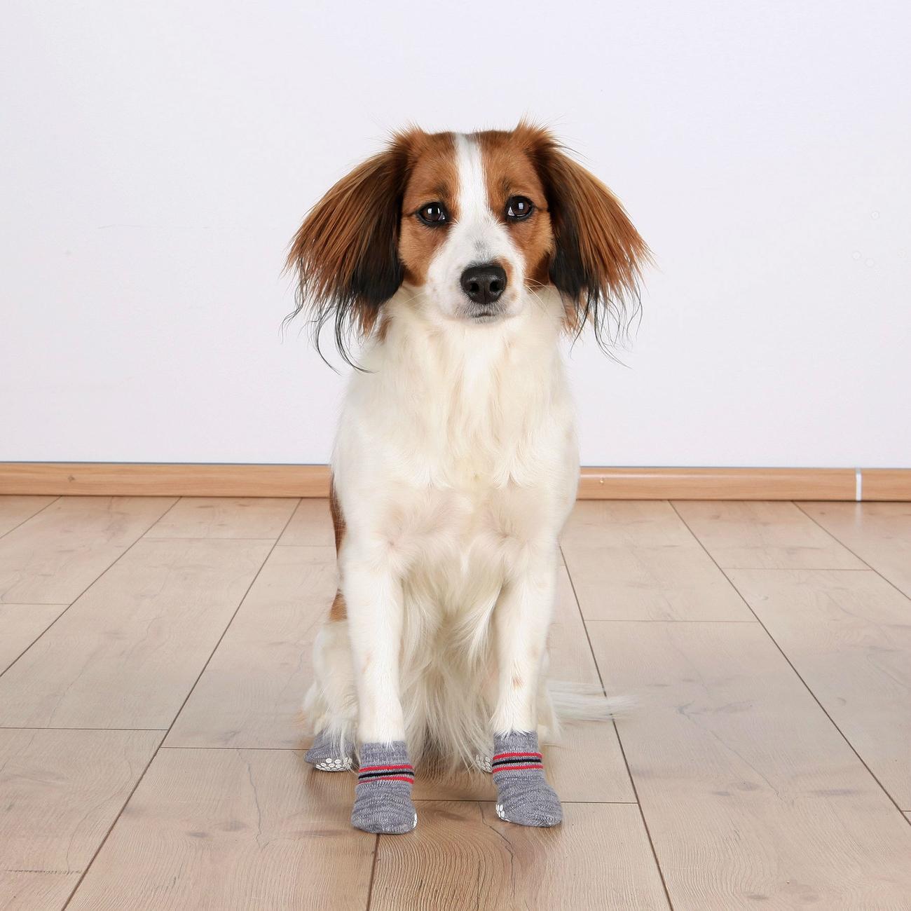 Trixie Anti Rutsch Hundesocken aus Baumwolle 19500, Bild 4