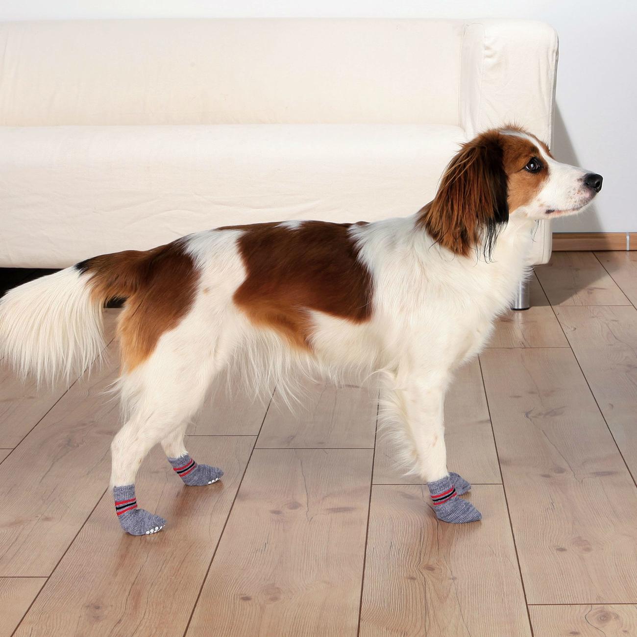 Trixie Anti Rutsch Hundesocken aus Baumwolle 19500, Bild 5