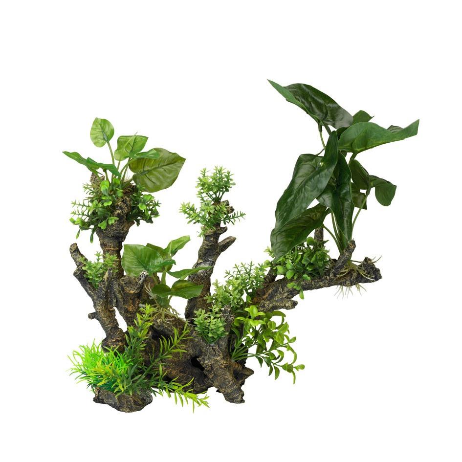 Aqua Della Flora Scape 1 XL