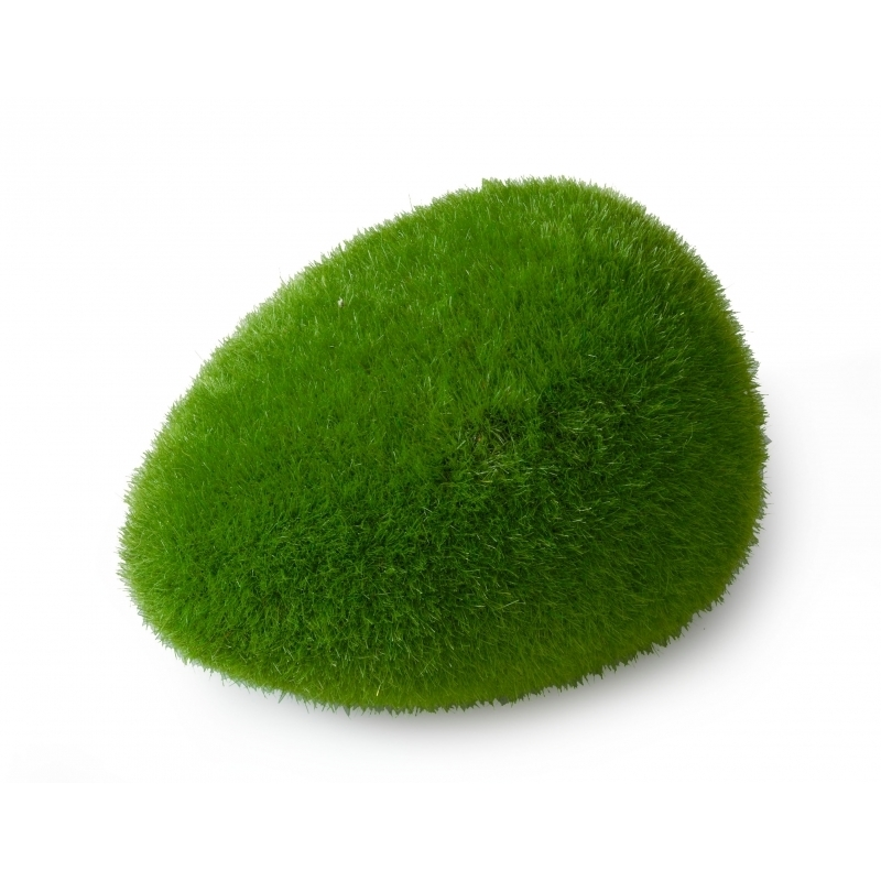 Aqua Della Moss Ball Preview Image