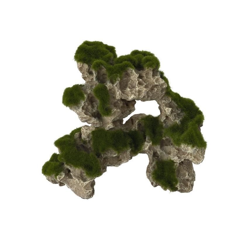 Aqua Della Moss Rock, Bild 3