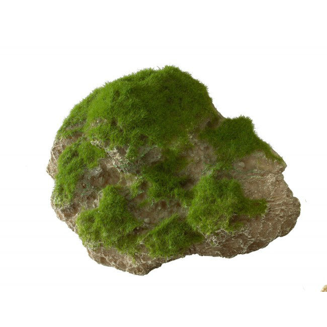 Aqua Della Moss Stone Stein mit Moos, Bild 4